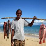 Fischfang am Strand