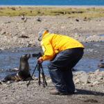 Begegnung mit einer Robbe